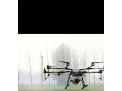 無人機打農藥,飛防植保,水稻小麥病蟲害防治,除草